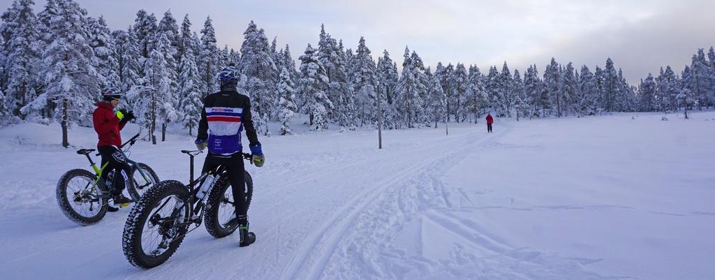 Norway Travel Visit The Oslo Region Visitosloregioncom